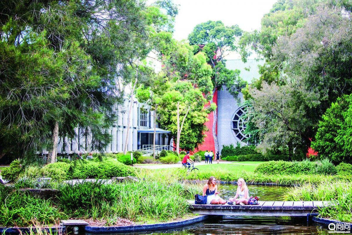 莫纳什大学1